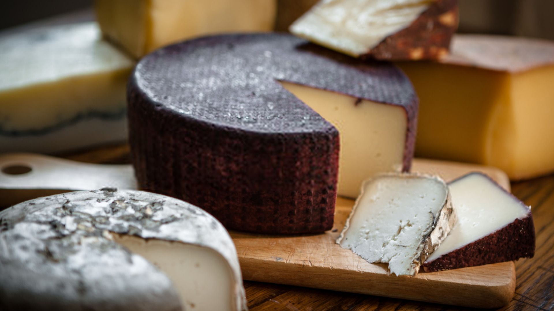 What is the stinkiest cheese in the world?